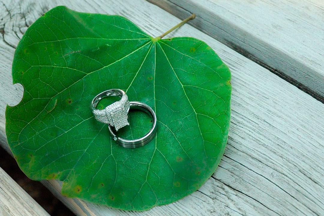 Saiba como ter um casamento eco friendly impecável 2